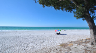 Holidays on the Gulf Coast of Florida by TailorMadeFlorida.com