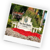 Holidays in New Port Richey by TailorMadeFlorida.com